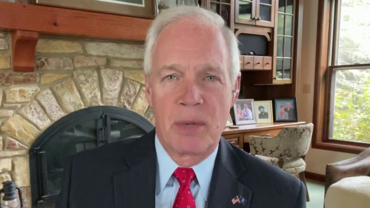 Sen. Johnson: No faith in government to solve supply chain woes